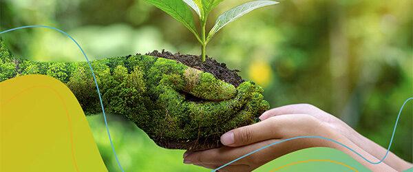 Kutatásunkból kiderült, a többség szerint a környezetvédelem a társadalom közös felelőssége.
